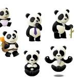 Panda évolution